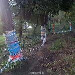 STALUCIA-20131223-00588