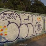 MACUL_DSC01536