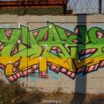 MACUL_DSC01538